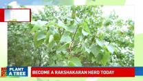 Vellamal School Of Chennai Launches Numerous Go-Green Initiatives