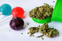 Top 10 Scary Facts And Stories About Marijuana