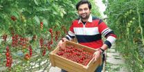 Futuristic farming, a predicted alternative