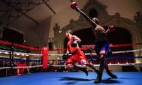 Gabriel review – plucky boxing story pulls its punches